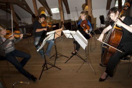 Hindsgavl2012-42